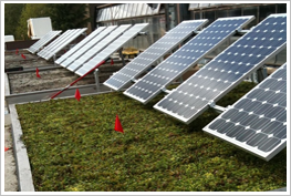 solar-pic1